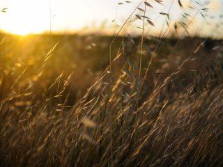 Hanggtime Sonnenuntergang