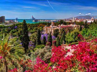 Hanggtime Spanien Malaga Blumen